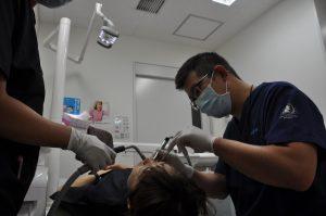 写真:歯科
